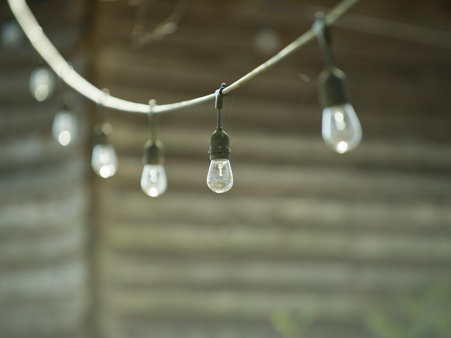 Thomas Edison Lights