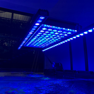 OR2 bar LED - Orphek - Coral Compass