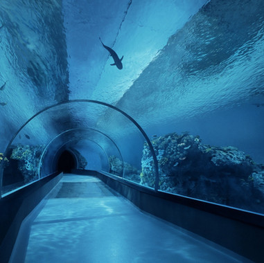 Blue Planet - Denmark - Tunnel