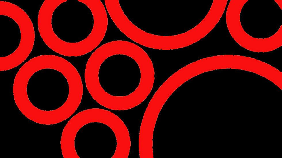 Hero Circles_2x.png