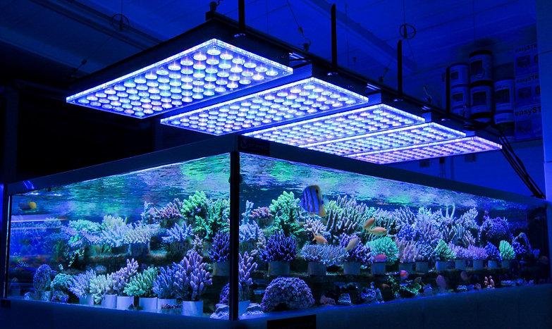 LED-Aquarium-Reef-Light-1-1600x954.jpg