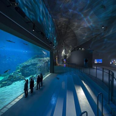Blue Planet - Denmark - Aquarium