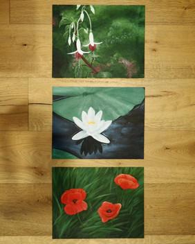 European Flower Series