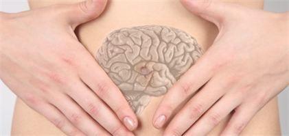 Notre ventre... Notre 2ème cerveau ???