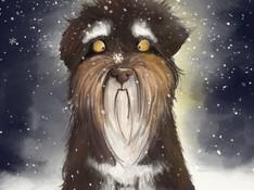 NASH_SNOW__.jpg