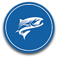 Salmon_Icons.png