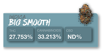 Indica big smooth.png