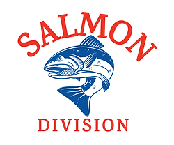 BST_DivLogo_Salmon-1.png