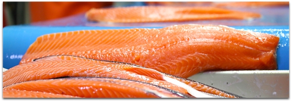 Product_Header_Salmon.png
