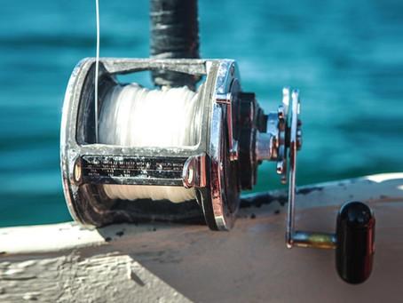 Boston on the Pacific: Ahi and Yellowfin Tuna