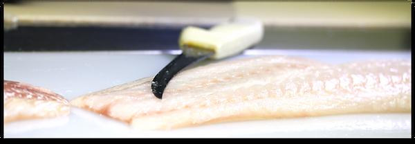 LP-Header_groundfish-1.png