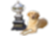 Beiley trophy clipped.png