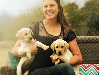 Selecting The Right Breeder To Purchase A Puppy From