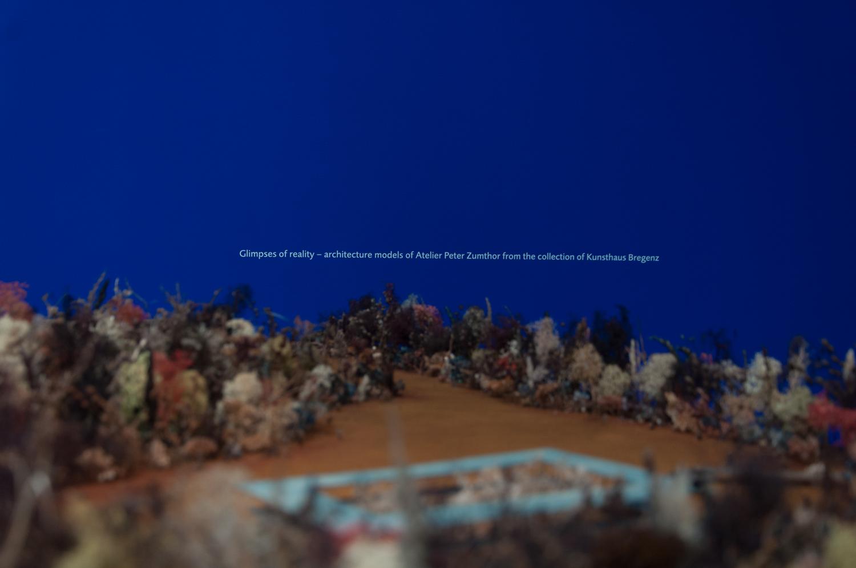 Biennale di Architettura di Venezia. Freespace Giardini. Atelier Peter Zumthor. Photo Irene Fanizza