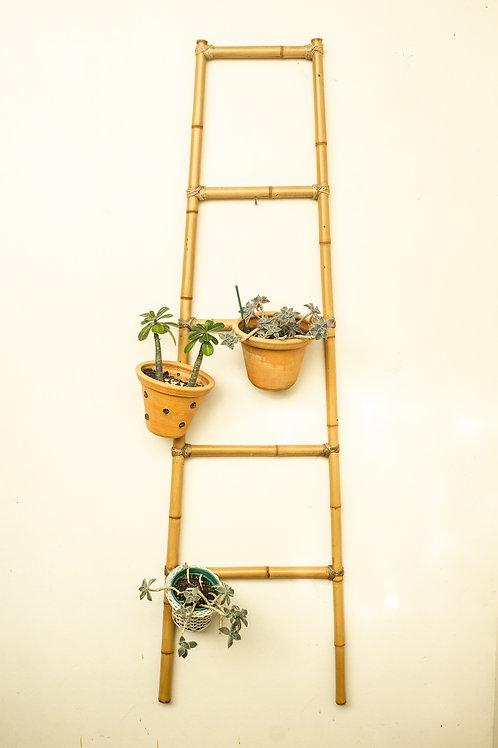 Escada decorativa de Bambu