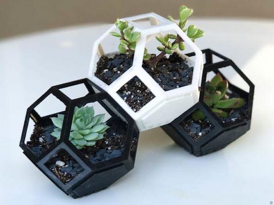 plantygon1.jpg