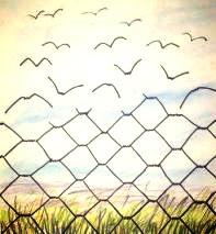 חומות של קריאה: על החופש הטמון בספרים