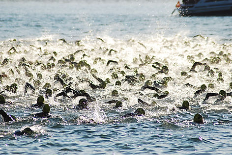open water swimming shepperton heron lake open water swimming thorpe open water swimming open water swimming surrey liquid leisure open water swimming sandhurst open water swimming mercers lake open water swimming shepperton open water swim 2017