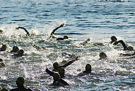 Open Water Endurance Training Plans by Speedy Swimming, Surrey Triathlon Swim Coaching