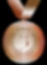 medal-2163351__480.png
