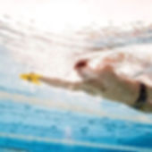 Swim monthly structured sessions online