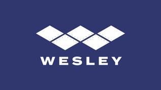 Wesley SafeStep Panels