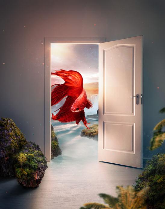 peces puerta.jpg