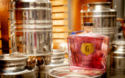 Gin Lovers Pink