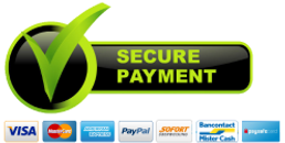 payment-secured-ssl-protocol.png