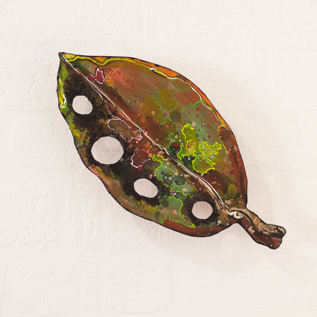 Small Pohutukawa Leaf.