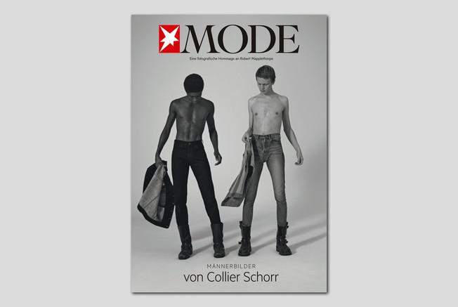 ST Mode 6.jpg