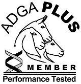 adga-plus-logo.jpg