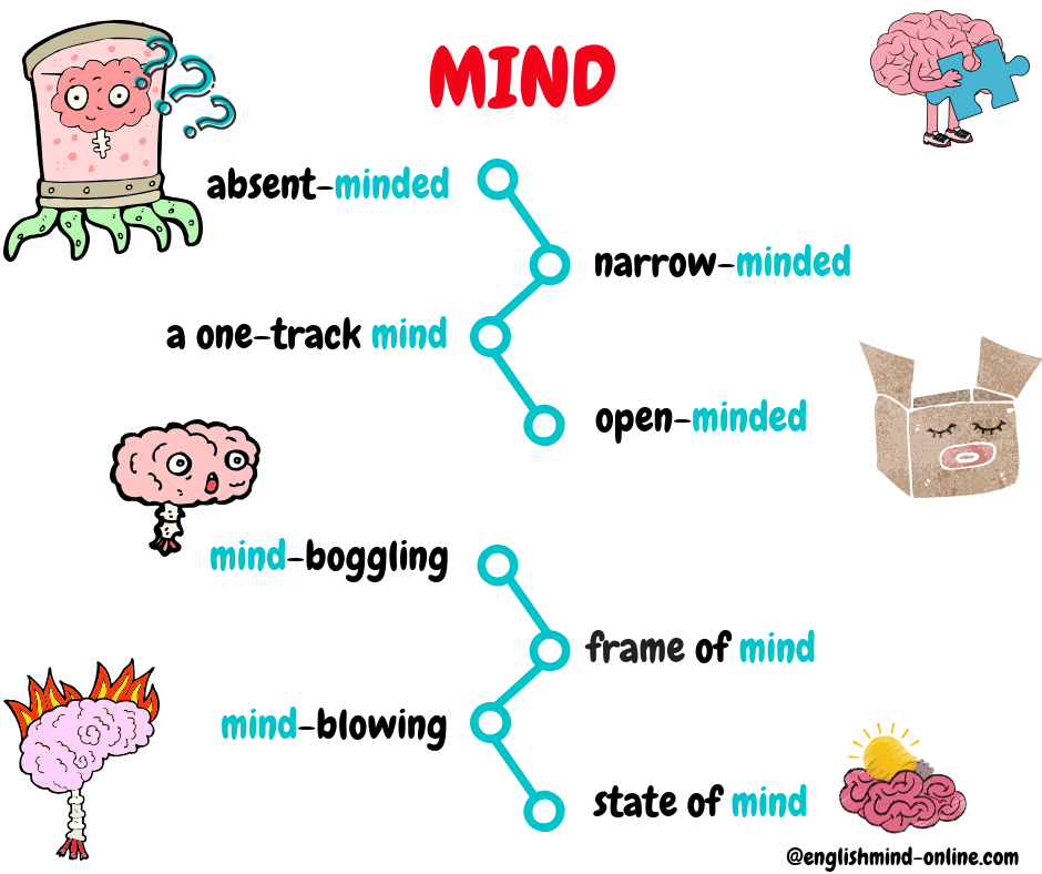 mind - English vocabulary and phrases, absent-minded, narrow-minded, open-minded, mind-boggling