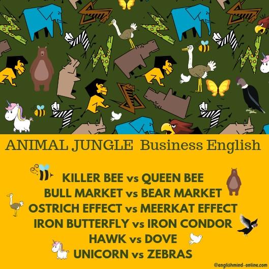 business English vocabulary - animals, bear market, killer beas