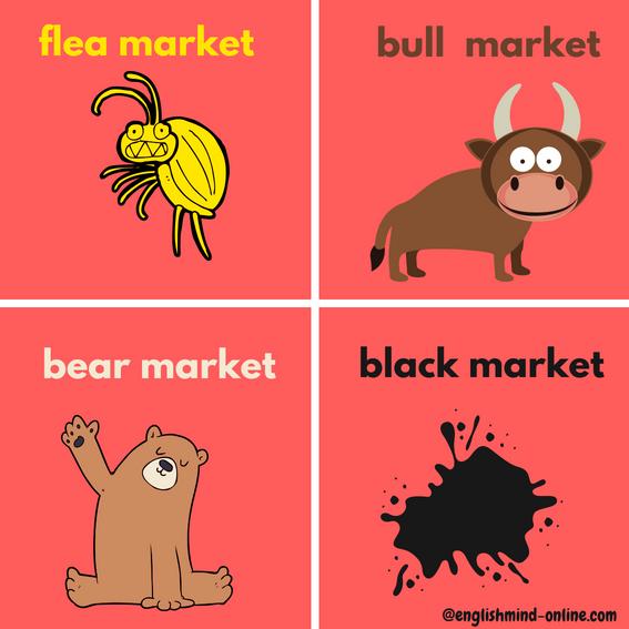bull market vs bear market - Leran English Visually