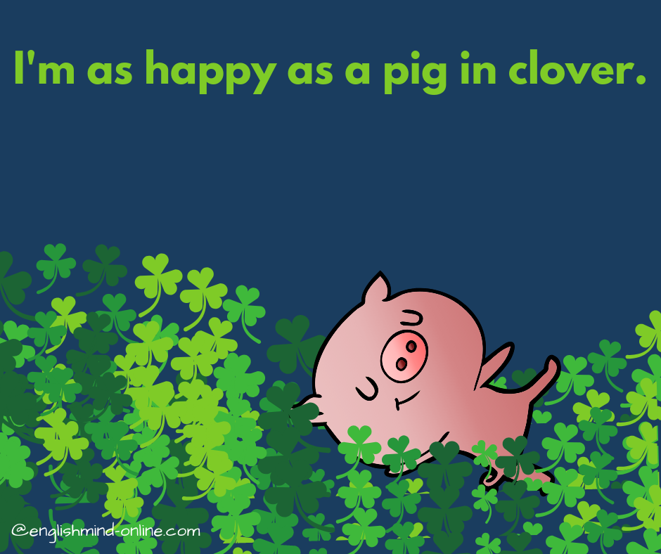 happy idioms in English - as happy as a pig in clover
