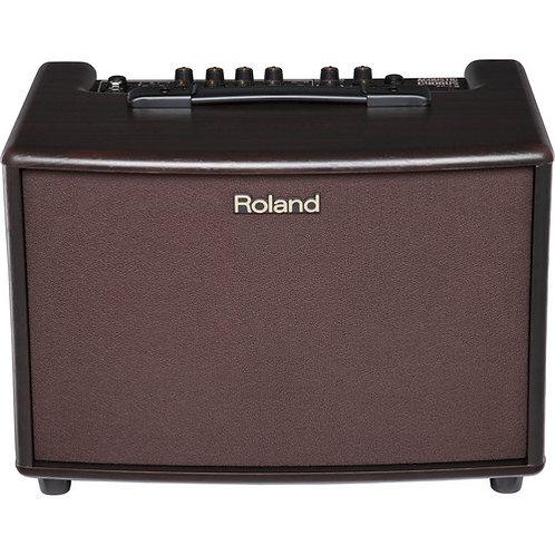 AC-60 Acoustic Chorus Guitar Amplifier : Roland