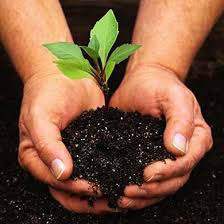 Cultivating the Soil of the Heart