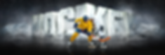 surreal_hockey_pano_banner__38416.151259