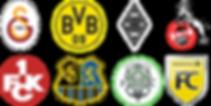 2018 Vereine Logos zusammen neu.png