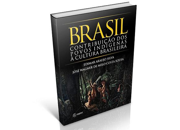 BRASIL: Contribuição dos povos indígenas à cultura brasileira
