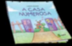 casa_numerosa_CAPA.png
