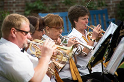 Our lovely back row cornets