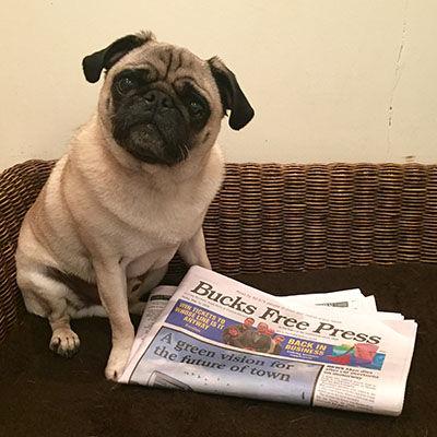 Bucks Free Press.jpg