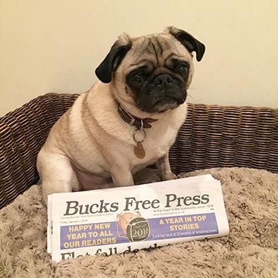 bucks free press image.jpg