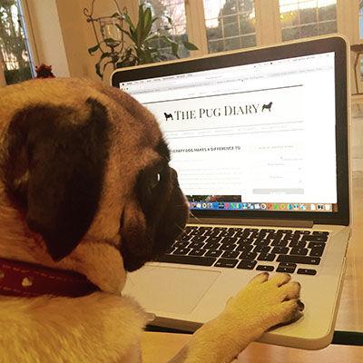 The Pug Diary.JPG