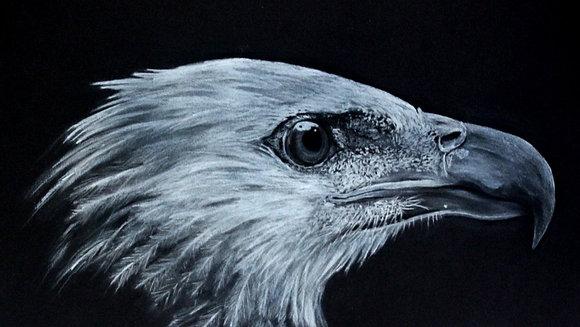 'Eagle'