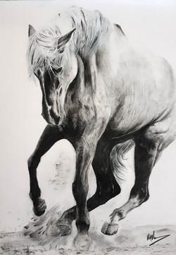 Horse1 - Original - sold.jpg