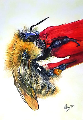 'Bee Kind'