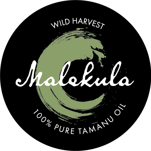MALEKULA-logo-A-white-on-black.png